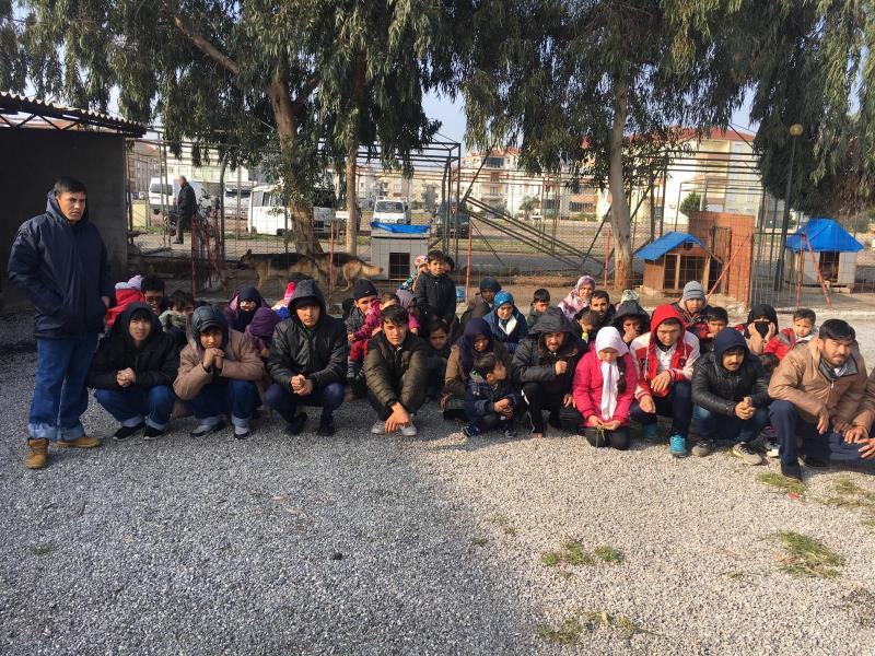 50 kaçak göçmen yakalandı