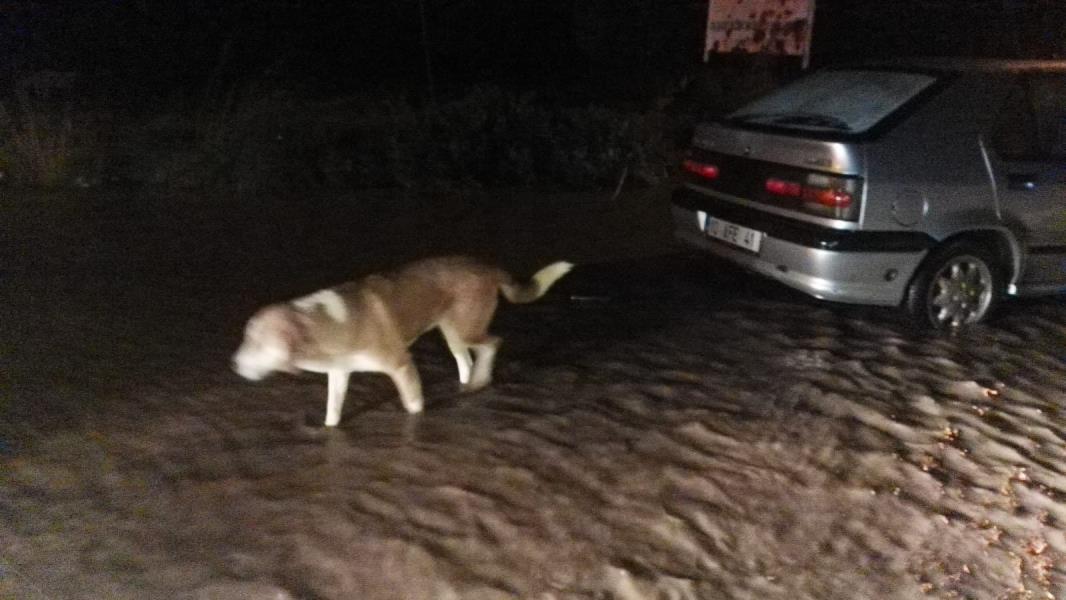 Erdek-Bandırma karayolu aşırı yağıştan dolayı kapandı