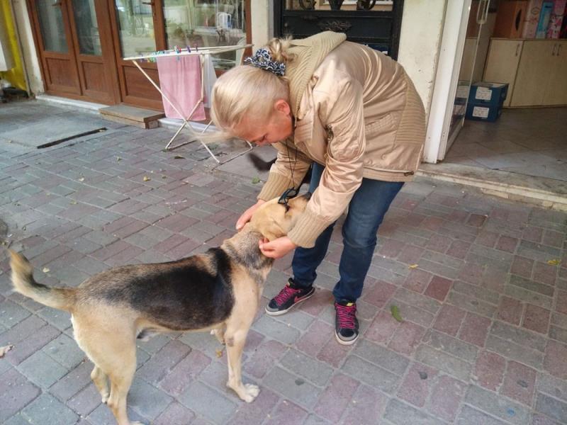 """Otansev, Karnı doyurulan köpek çevreye zarar vermez"""""""
