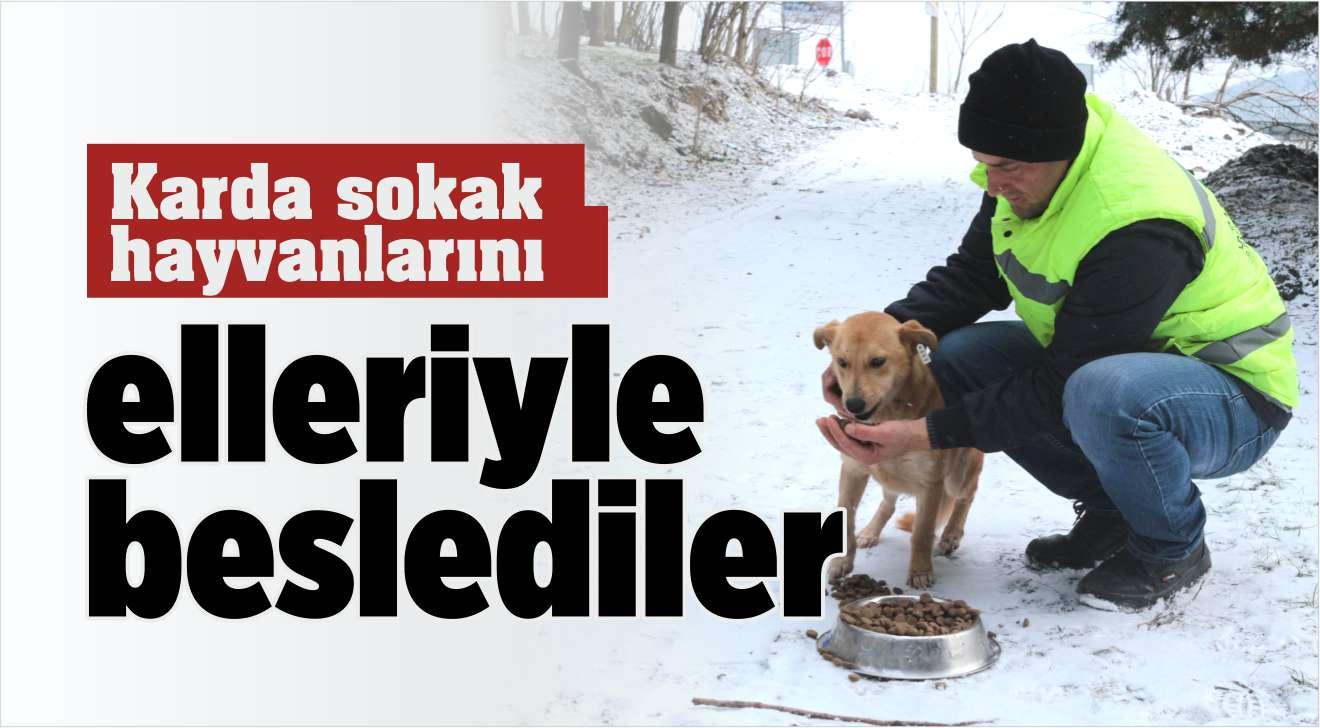 Karda hayvanları elleriyle beslediler