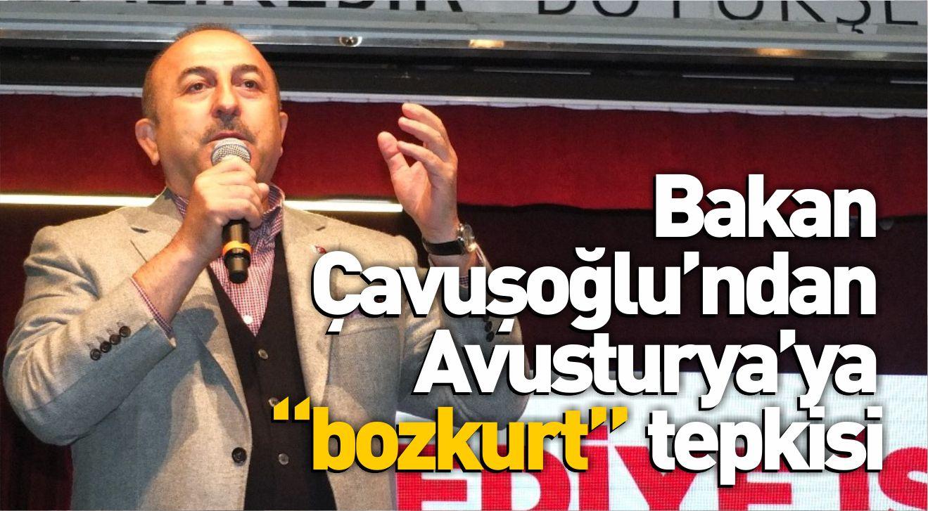 """Bakan Çavuşoğlu'ndan Avusturya'ya """"bozkurt"""" tepkisi"""