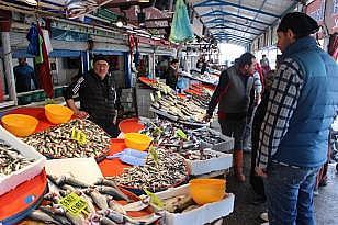 Tezgahlarda balık çeşitliliği arttı, fiyat düştü