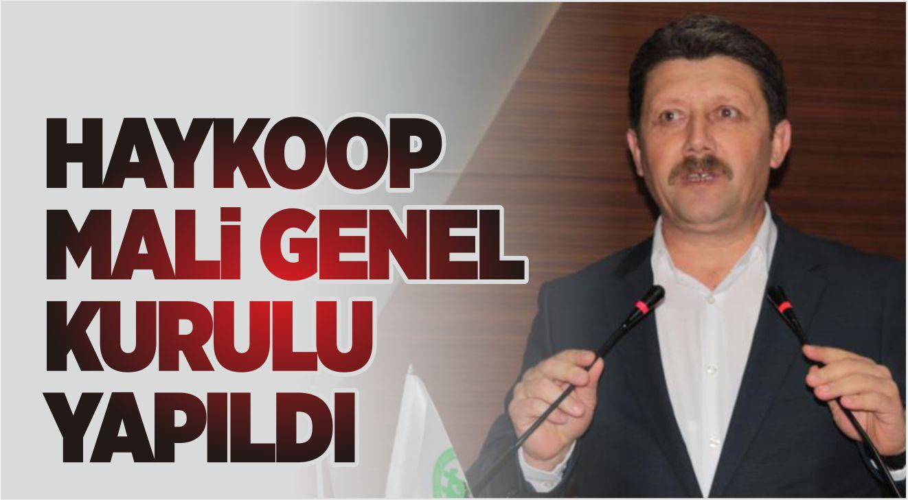HAYKOOP MALİ GENEL KURULU YAPILDI