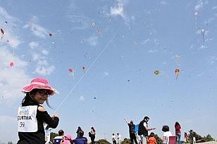 21 Uçurtma Şenliği Edremit'te yapıldı