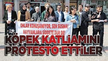 KÖPEK KATLİAMINI PROTESTO ETTİLER