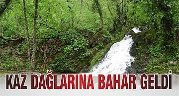 KAZ DAĞLARI'NA BAHAR GELDİ