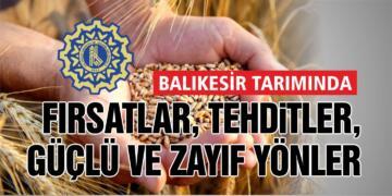 BASİAD'DAN BALIKESİR'İN TARIM VE GIDA RAPORU