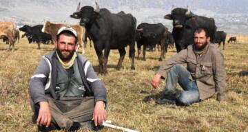 Sağır ve dilsiz kardeşler 20 yıldır çobanlık yapıyor