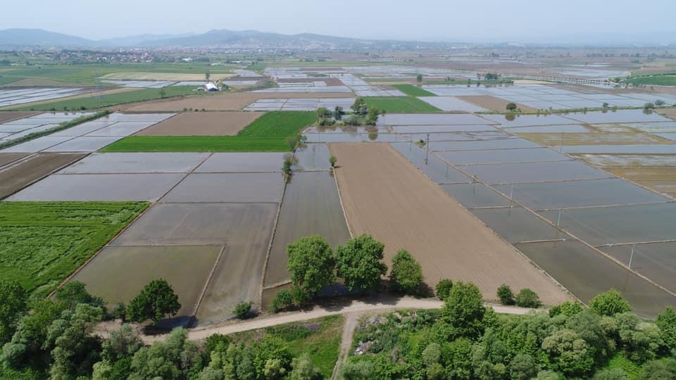 DSİ Balıkesir'de 6 bin 414 hektar alanda arazi toplulaştırma yaptı