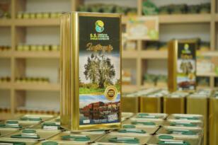 Belediye'nin ağaçlarından 5 ton zeytinyağı elde edildi