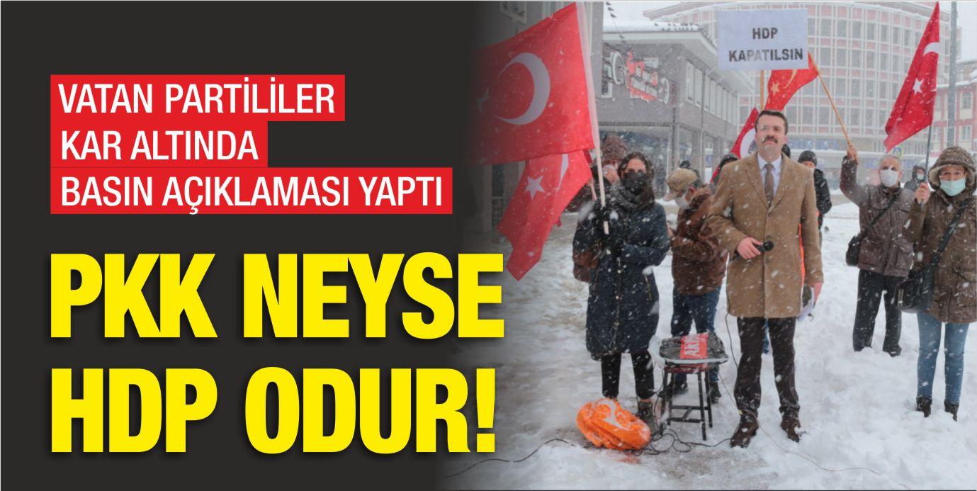 VATAN PARTİLİLER MEYDANDA HAYKIRDI: PKK NEYSE HDP ODUR
