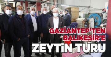 GAZİANTEP'TEN BALIKESİR'E ZEYTİN TURU