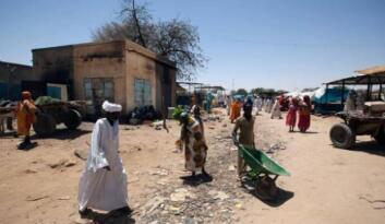 Sudan'da kabile çatışmaları: 50 ölü